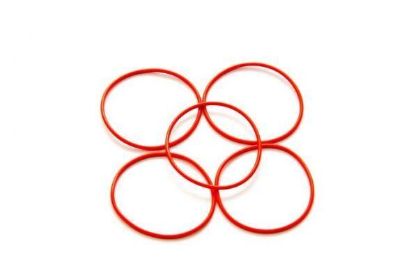 O-Ring 22x0.9mm (5)